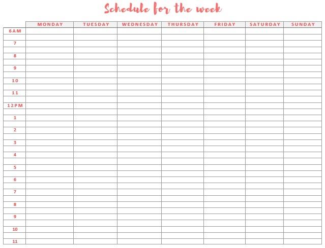 Study Schedule